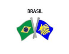 Pin Metal Bandera Brasil Camino Santiago