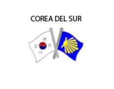 Pin Metal Bandera Corea del Sur Camino Santiago
