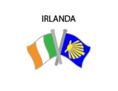 Pin Metal Bandera Irlanda Camino Santiago
