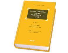 La prueba en la Ley de Enjuiciamiento Civil.3aEd.-A.Díaz Fuentes