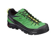 Zapato Salomon X Alp LTR GTX Verde/Negro